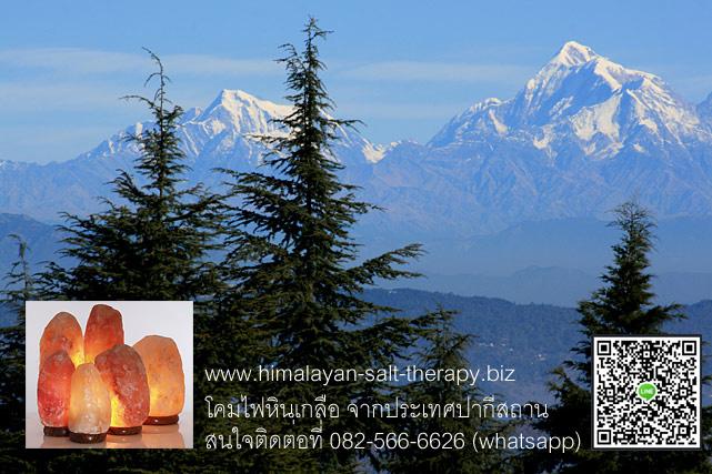 โคมไฟหินเกลือหิมาลัย Himalayan SaltLamp